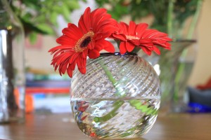 Optically Twisted Vase